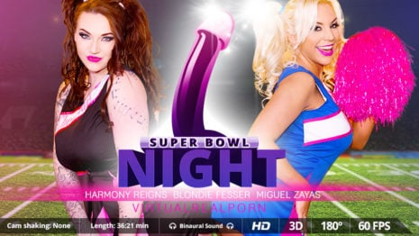 Super Bowl night VR Porn video.